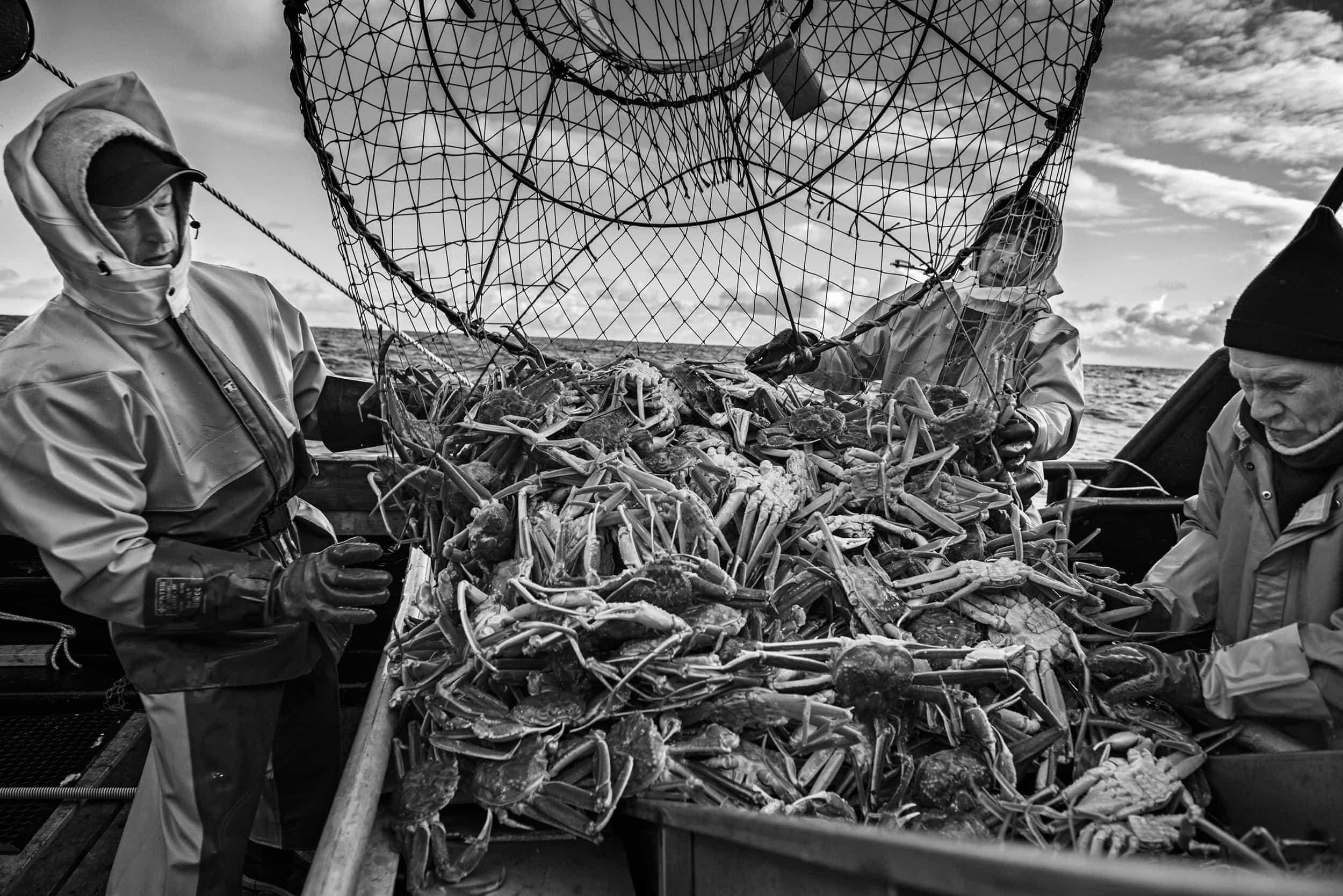 – Arctic Catch