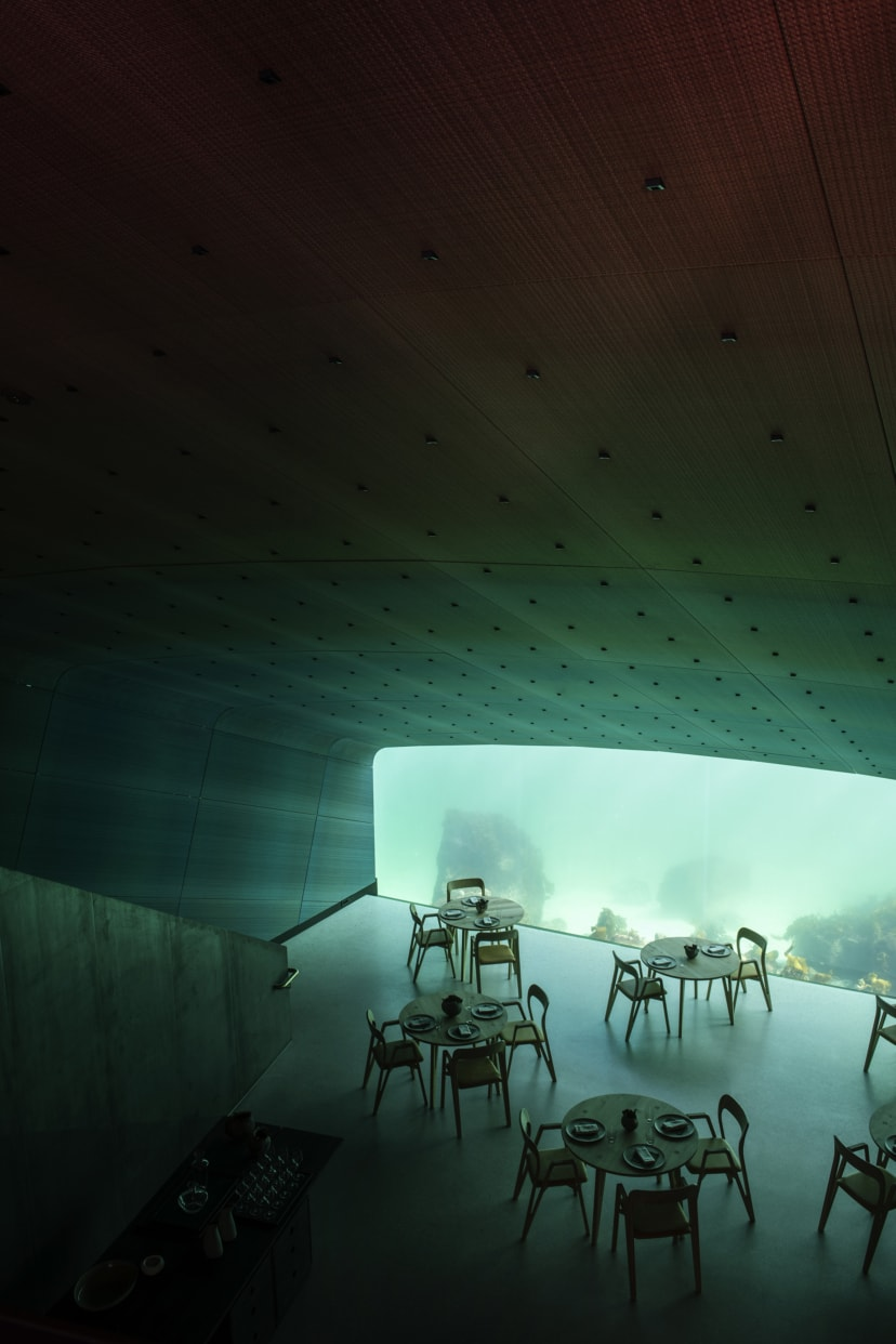 https://hestagentur.no/ivar-kvaal/under-for-snohetta/