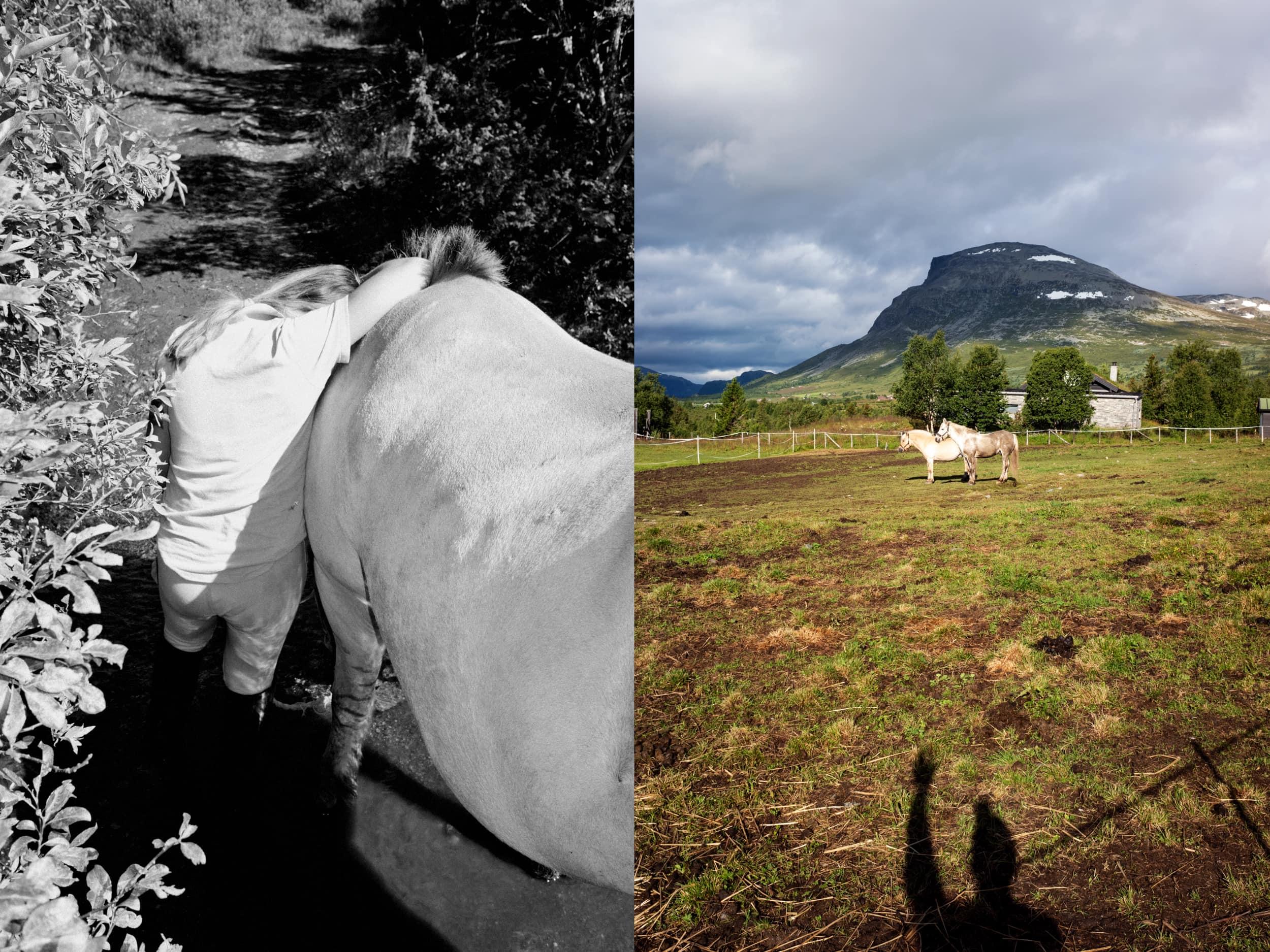Kimm Saatvedt – Tok en rideleir sommeren 2020